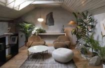 10 ý tưởng trang trí nhà cửa theo phong cách hữu cơ