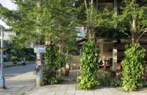 Quán cafe 3 tầng như khu vườn nhỏ xinh gây sốt tại phố cổ Hội An